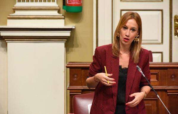 Resultado de imagen de diputada socialista Fierro